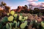 Cathedral Rock, Sedona AZ