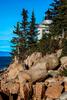 Bass Harbor Head Lighthouse Morning