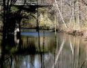 Bridge at Mount Holyoke College Massachusetts