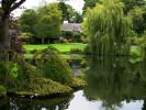 Garden with Pond Dublin Ireland