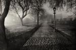 road through grayfriars kirk graveyard at night