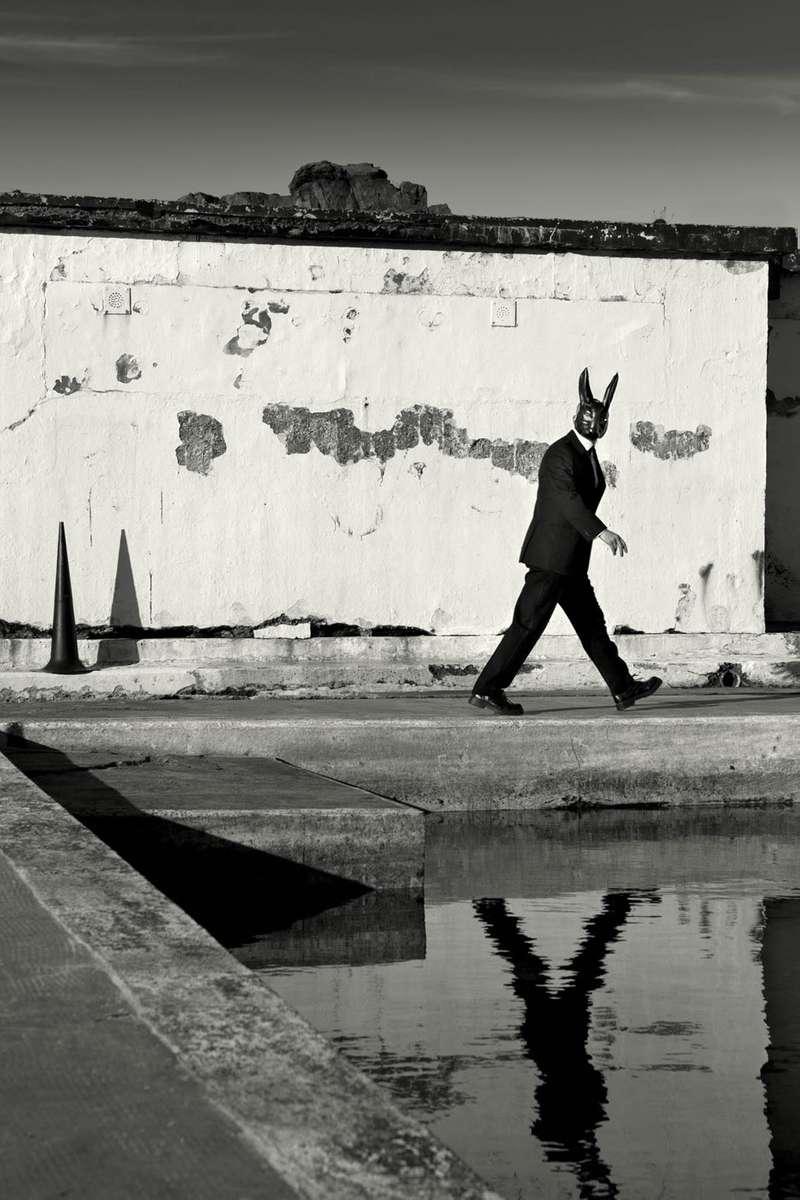 The Hare I