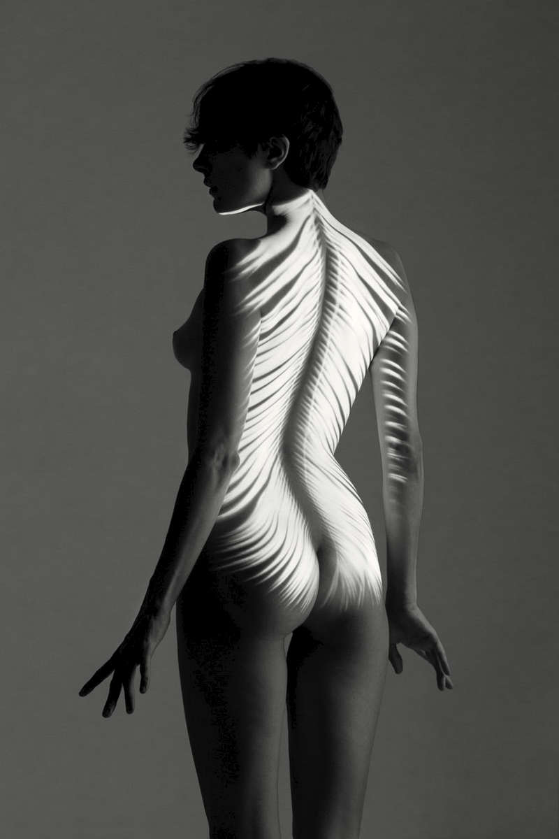 fine art black and white studio female nude of a woman with projected feathers on her back