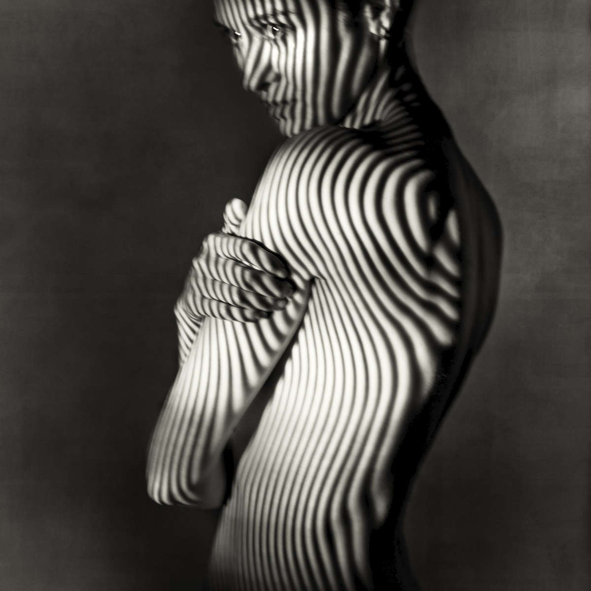 fine art black and white studio female nude with animal stripes projected