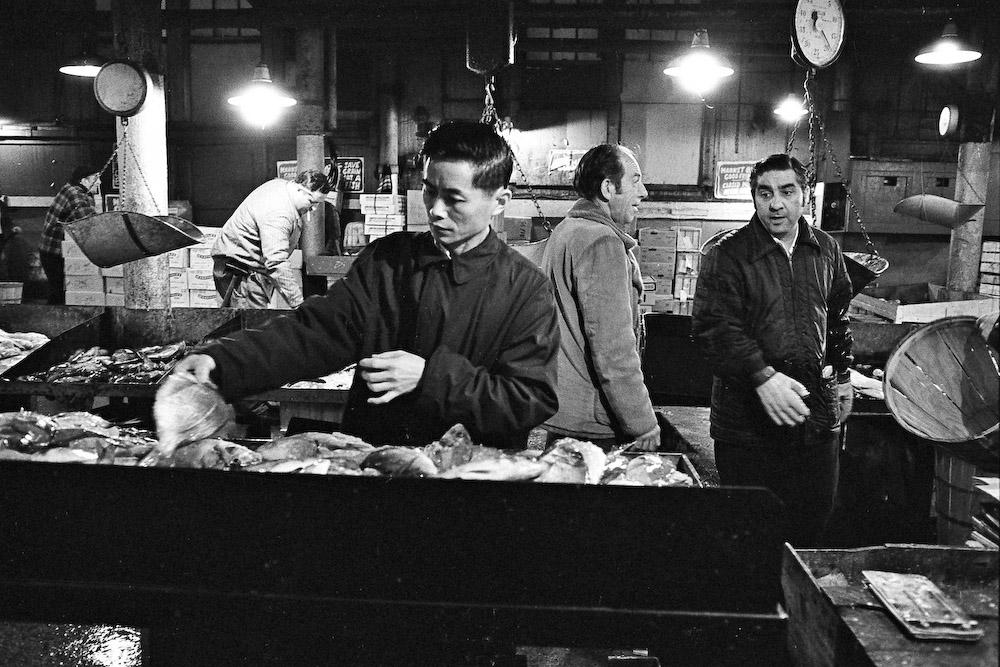 Asian Man Looking at Fish
