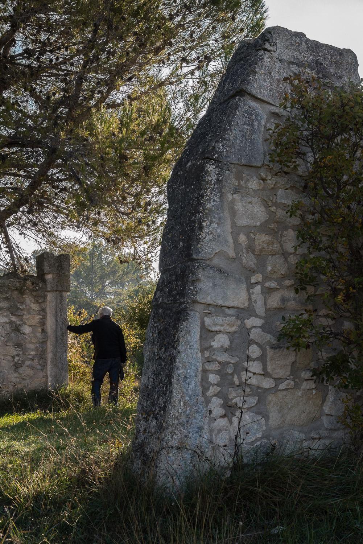 Fields behind Saint-Paul Asylum, Saint-Rémy de Provence