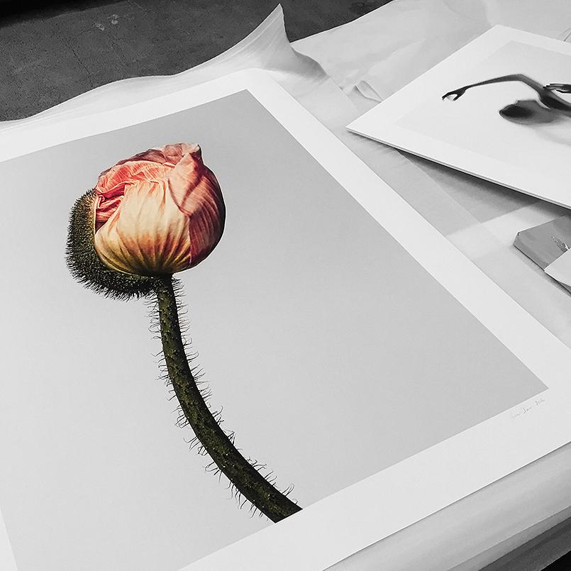 prints02