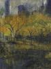 New York Central Park  Opus 18