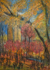 Fall in Central Park Opus 776