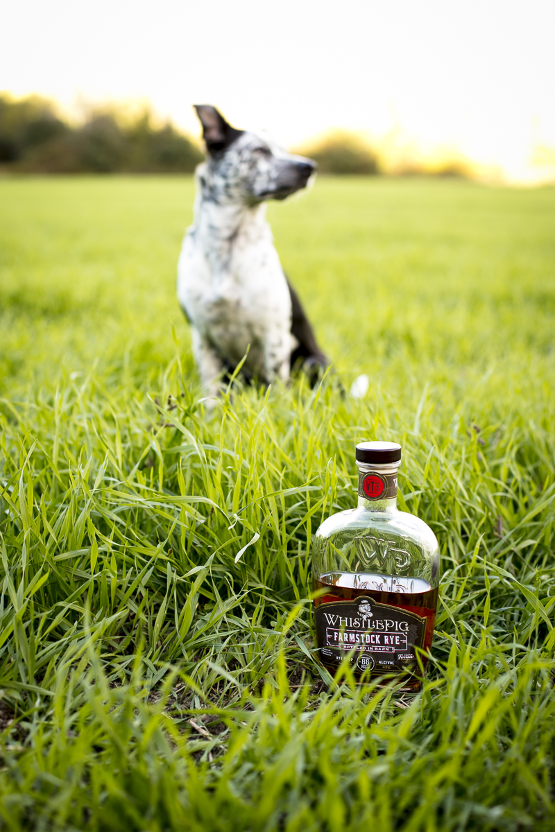 Lifestyle and product photography for Whistlepig Whiskey, by JAM Creative.