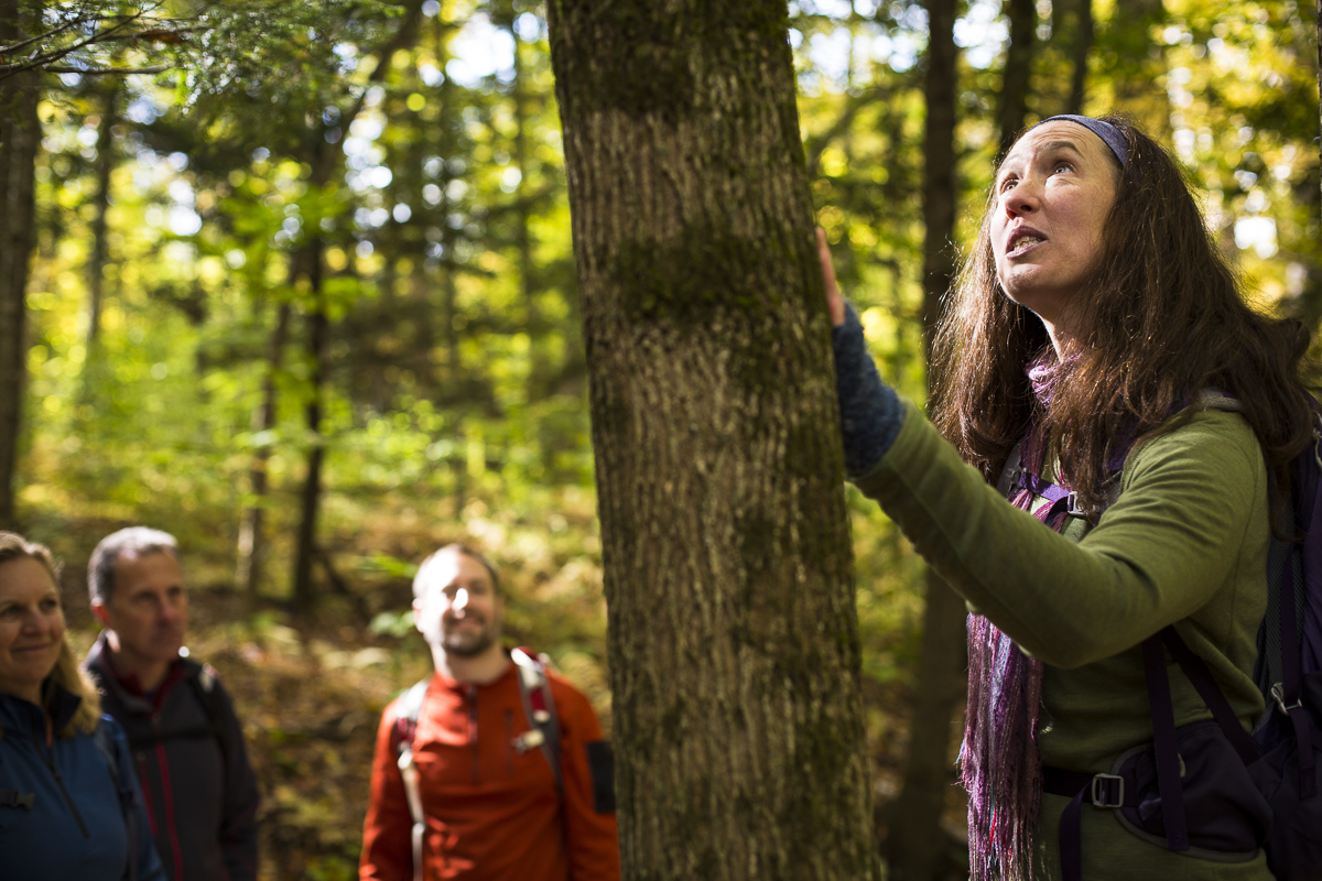 A guide from Country Walkers guided tours explains the local fauna during their tour of Waterbury, Vermont. By JAM Creative.