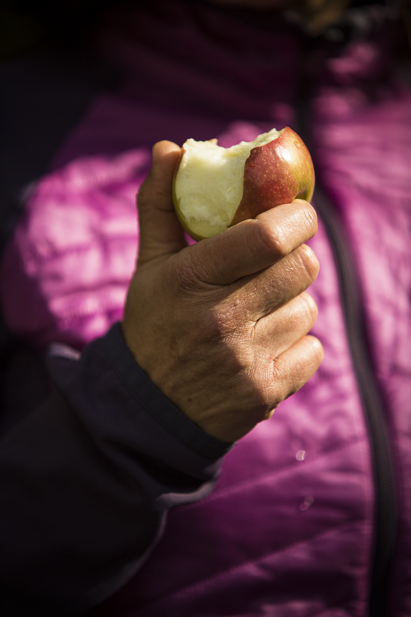 A patron on a Country Walkers guided tour eats an aple. By JAM Creative.
