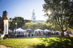 Marketgoers wander between booths at the summer Burlington Farmers Market in City Hall Park on Saturday, September 29, 2018. by JAM Creative for Yankee Magazine
