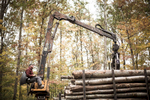 White oak harvest and logging for Caledonia Spirits barrels in Salisbury, Vermont. by Reciprocity Studio for Caledonia Spirits.