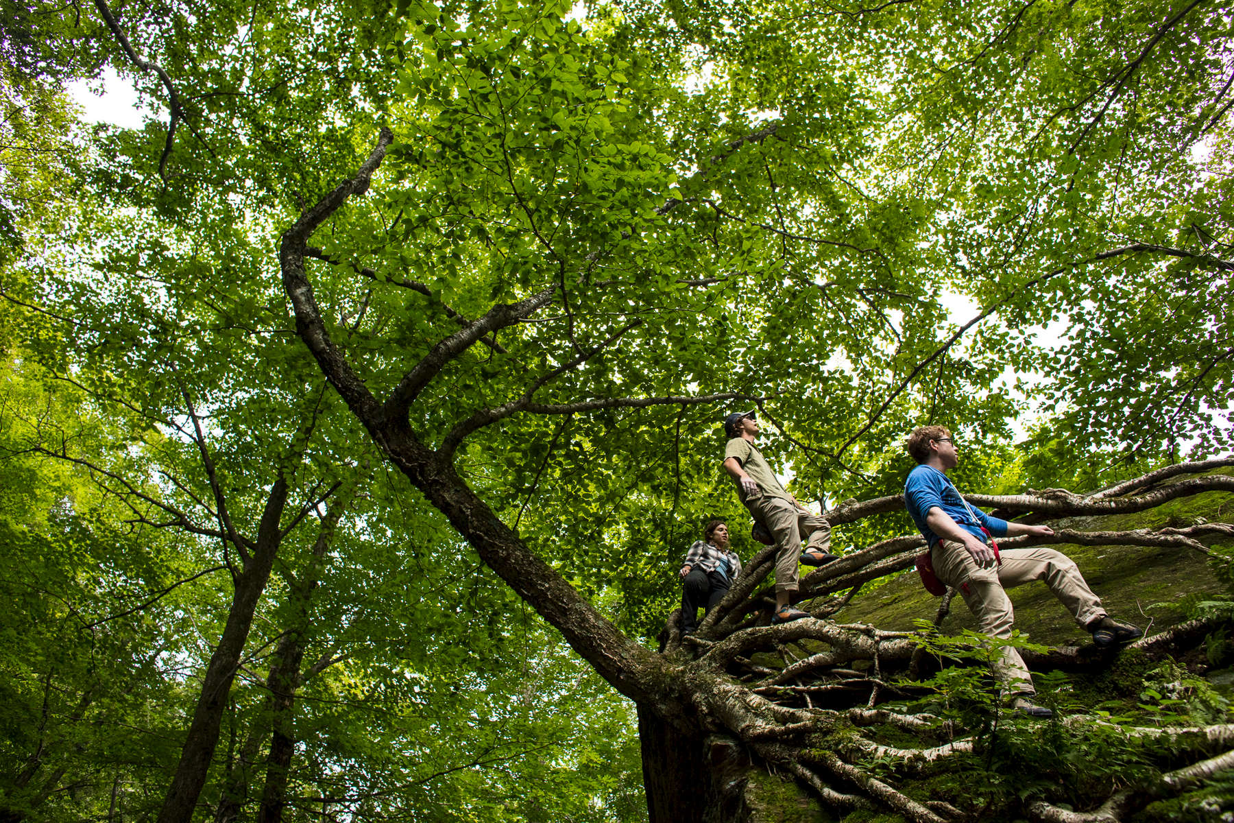 Jam Creative heads into the woods to capture vermonters climbing in the trees for a IASO Goods lifestyle product photo shoot.