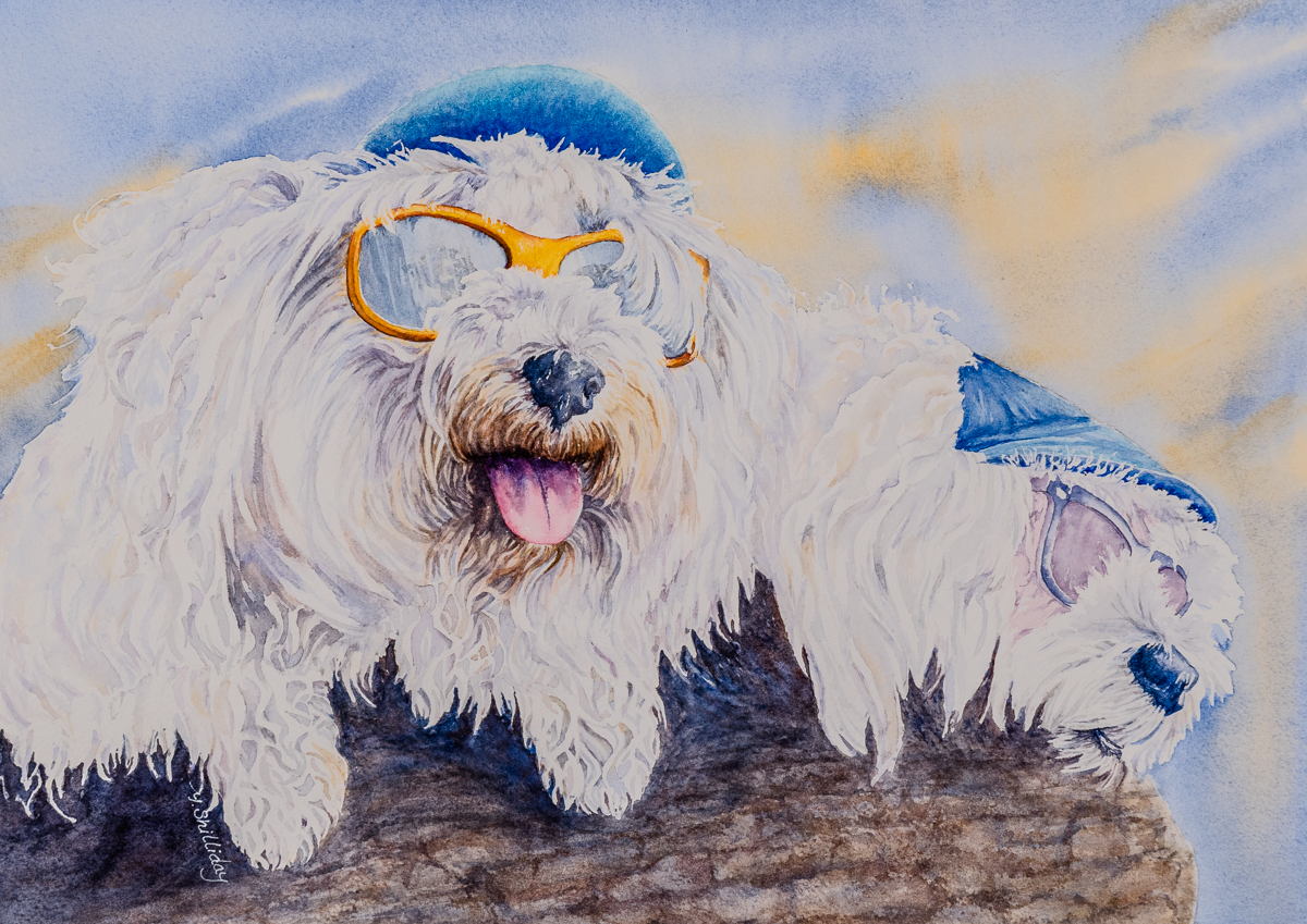 two_dogs_with_glasses