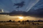 Africa, Sudan, South Kordofan. 29/11/2013.  A South Kordofan landscape. The people of Nuba Mountains, long time victims of discrimination from South Sudan government, has been subjected to a fierce campaign of aerial bombardment since June 2011 after fighting broke out between Khartoum and Nuba Rebels, the SPLA-N troops.Africa, Sudan, Sud Kordofan. 29.11.2013. Un paesaggio del Sud Kordofan. La gente dei monti Nuba, sono vittime da molto tempo di discriminazione da parte del governo del Sudan, e sono state sottoposte ad una feroce campagna di bombardamento aereo indiscriminato dal giugno del 2011 dopo che sono scoppiati gli scontri tra i ribelli Nuba, le truppe SPLA-N, e il governo di Khartoum.