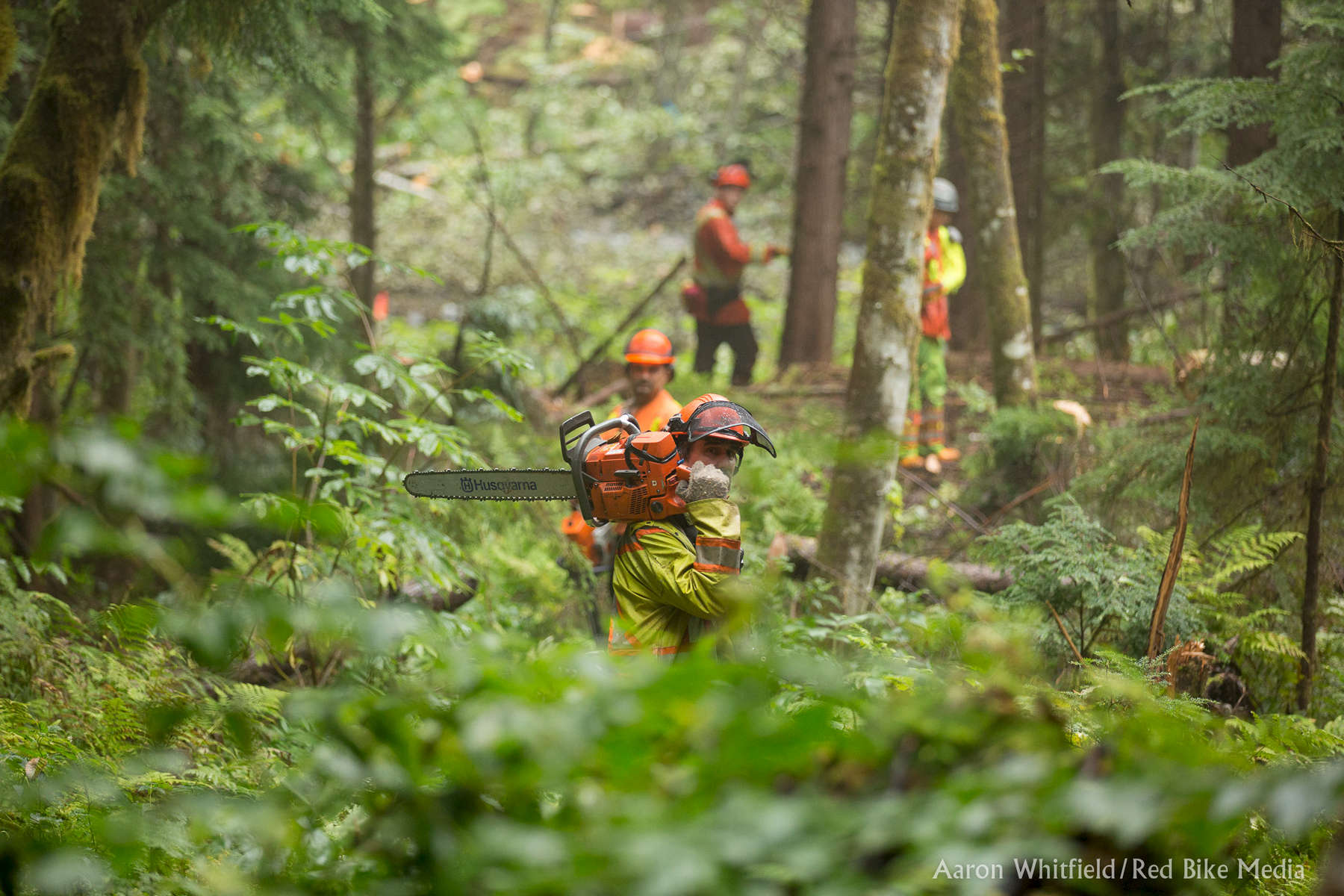 Kitselas-Forestry-4327