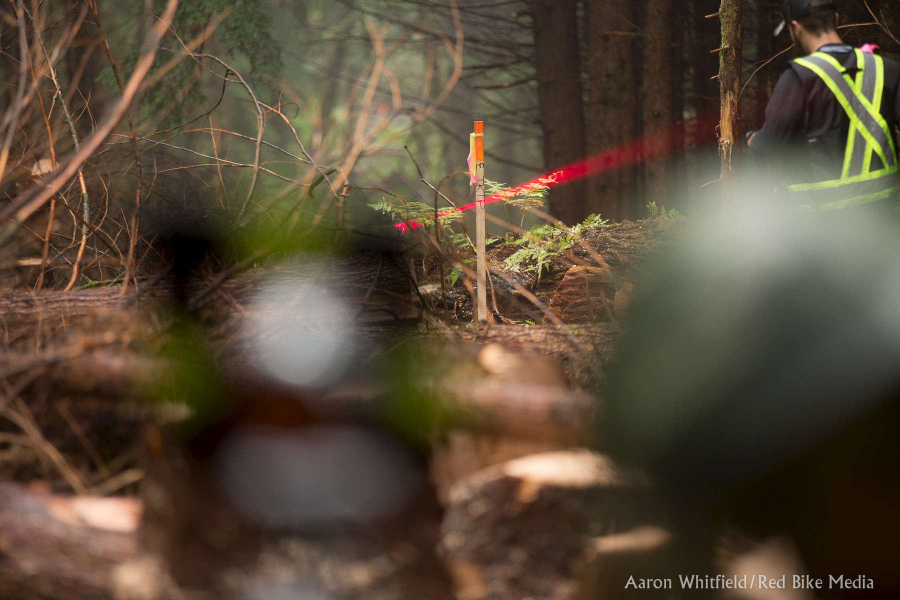 Kitselas-Forestry-4638