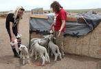 Jamie and Daisy Hand bottle feed lamb on the Tenacious Unicorn Ranch.