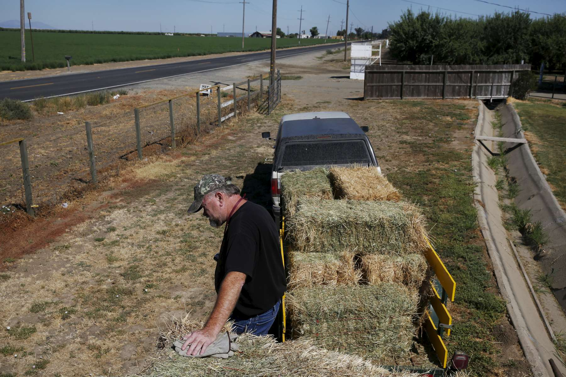Baker pauses in the heat after loading an order of hay onto a customer's trailer at his home. Though he has senior water rights, Baker had his water turned off after the California State Resources Control Board ordered Banta-Carbona Irrigation District to stop pumping water.