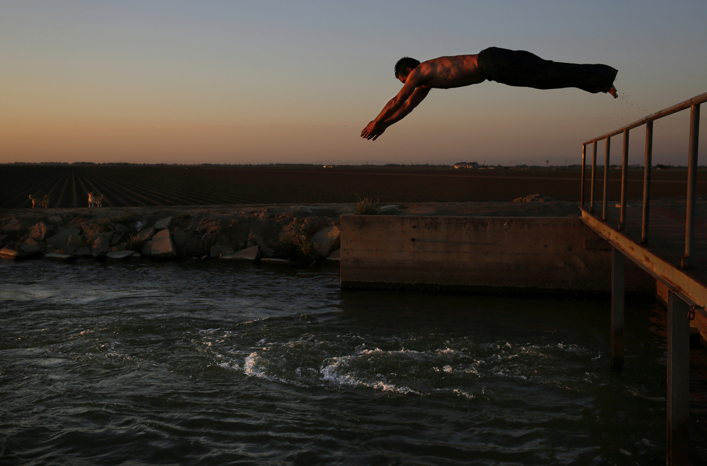 Martín Hernandez Mena, 50, dives into an irrigation canal in June near the shantytown he lives in located in a dried up canal bed on Westlands Water District land outside of Mendota, Calif.