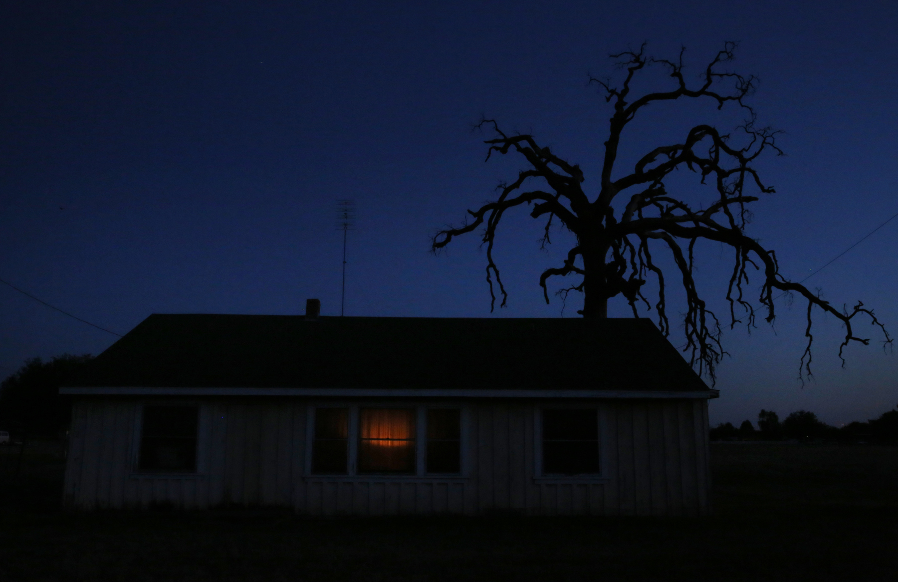 Evening falls over a gnarled tree and a small home April 13, 2015 near Tulare, Calif.