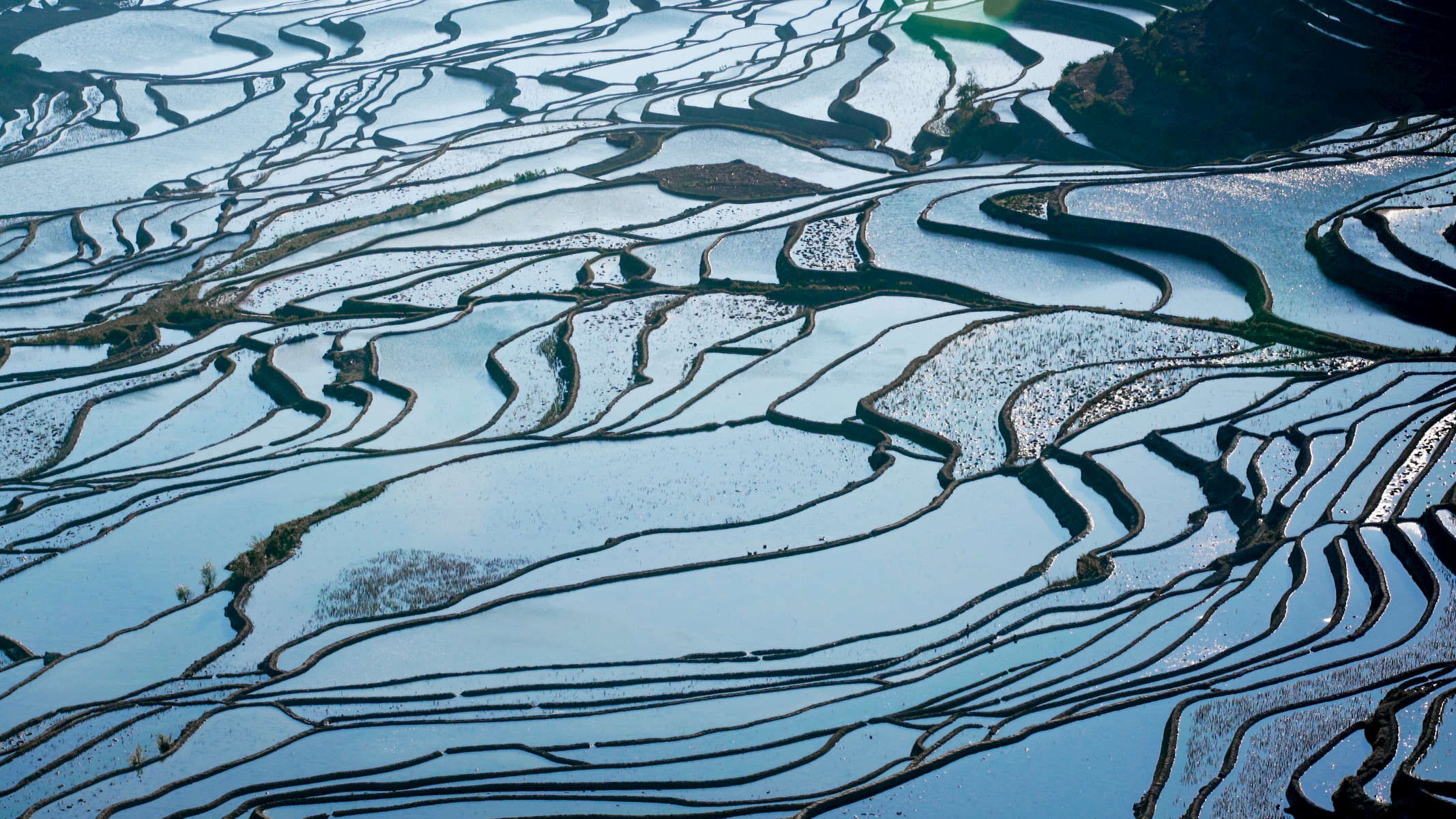 China-Yunnan-Hani-Rice-Terraces-Photo-by-Cyril-Eberle-A7S-Still-002