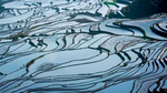 China-Yunnan-Hani-Rice-Terraces-Photo-by-Cyril-Eberle-A7S-Still-002