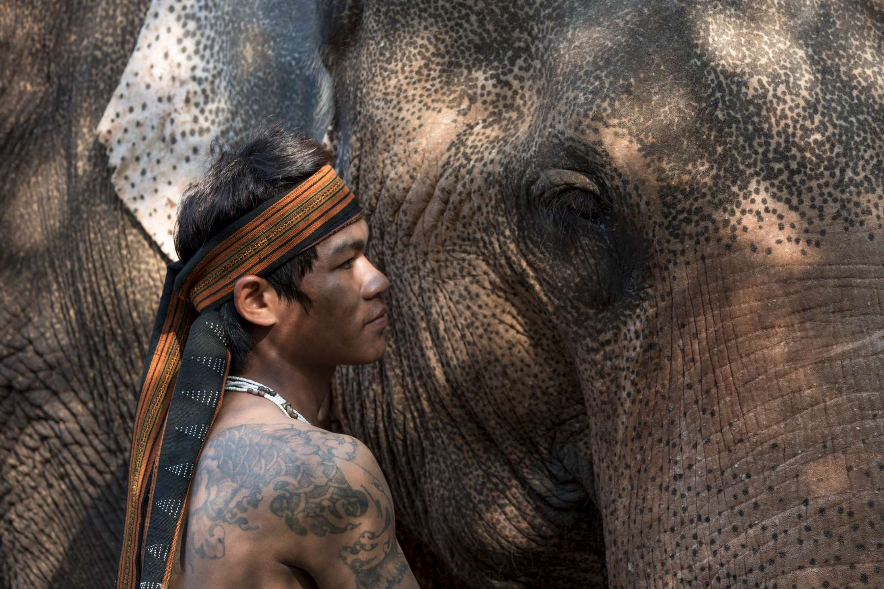 Laos-Asian-Elephant-Mahout-Photo-by-Cyril-Eberle-CEB_3240-web