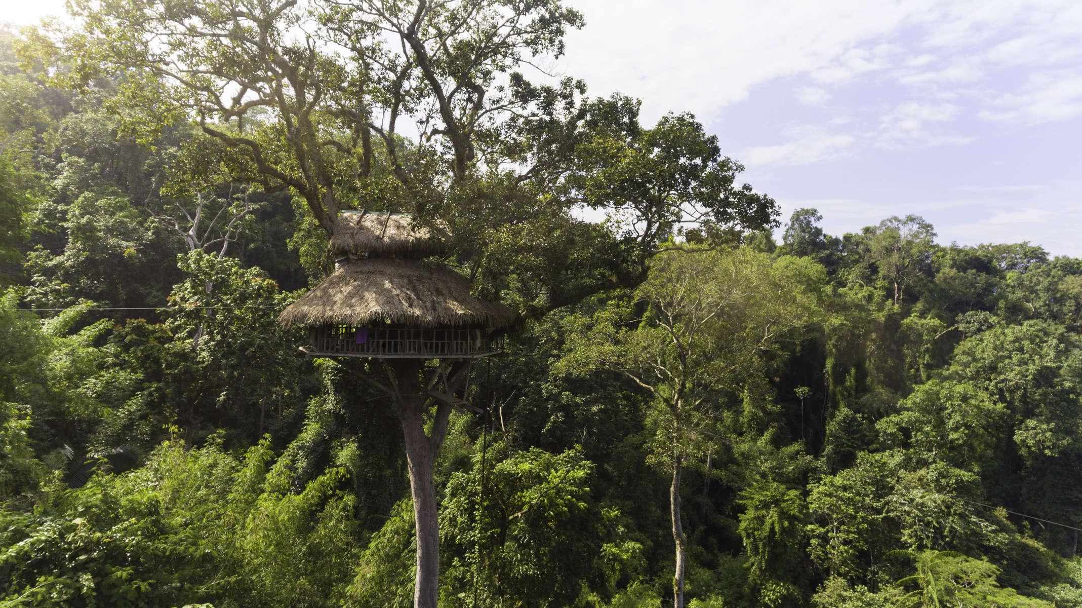 Laos-Bokeo-Gibbon-Experience-Tree-House-GIZ-Photo-by-Cyril-Eberle-DJI_0457
