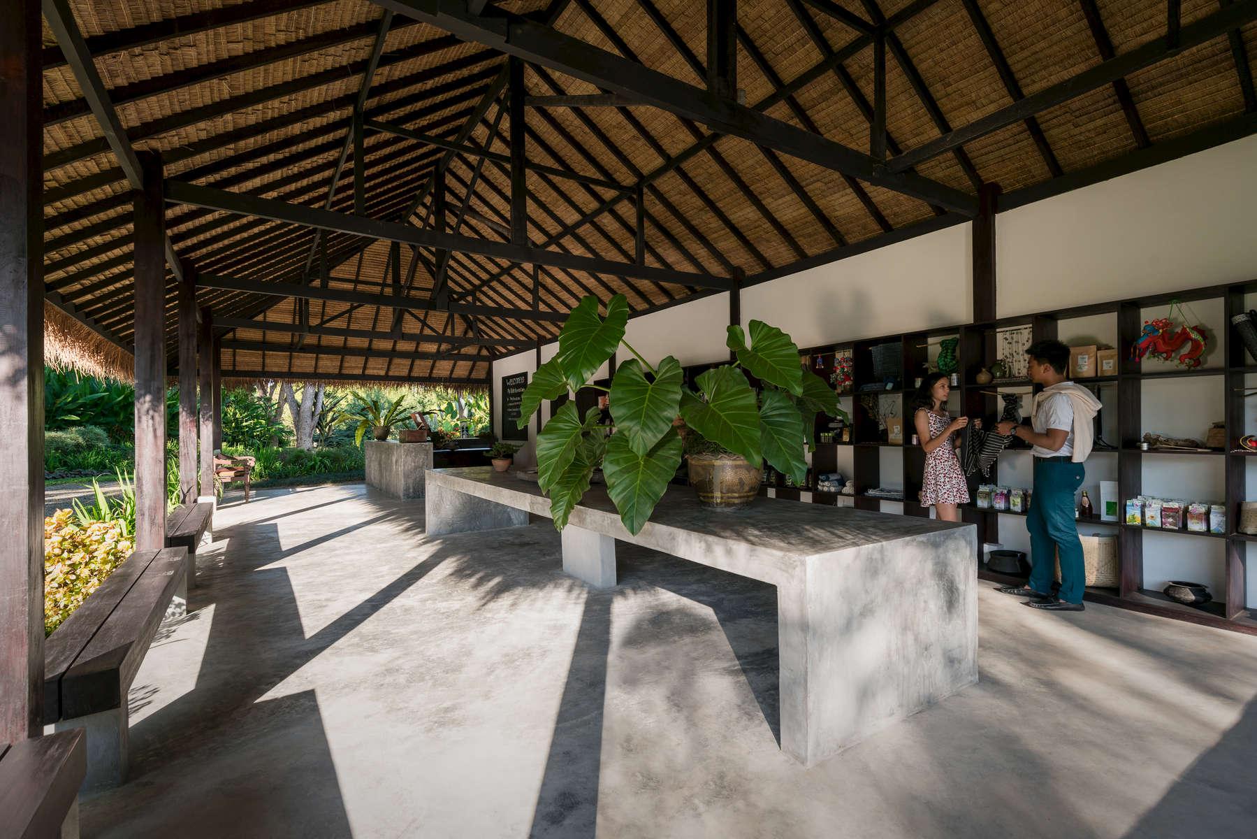 Laos-Luang-Prabang-Pha-Tad-Khe-Botanical-Garden-Photo-by-Cyril-Eberle-DSC04669-vignette