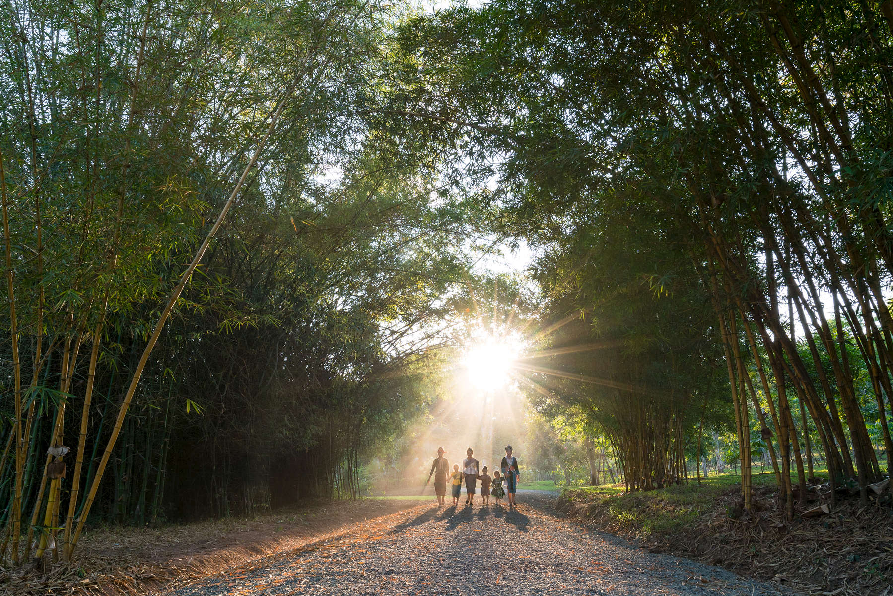 Laos-Luang-Prabang-Pha-Tad-Khe-Botanical-Garden-Photo-by-Cyril-Eberle-DSC05070