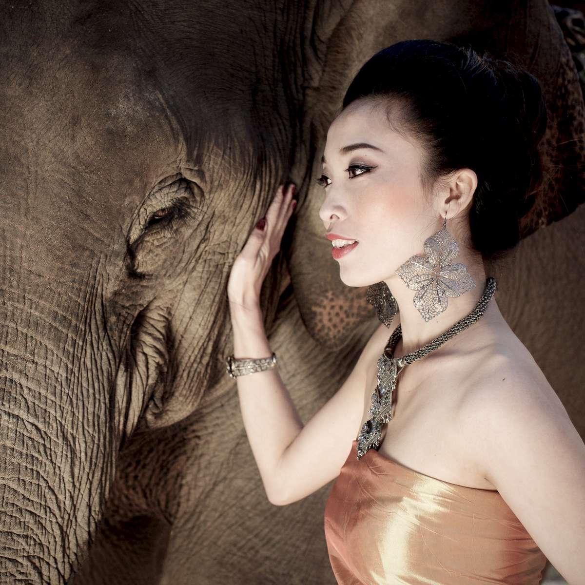 laos-sao-lao-asian-elephant-CEB_4309