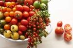 OG_tomatoFeature2427