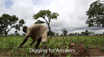 Digging for Answers