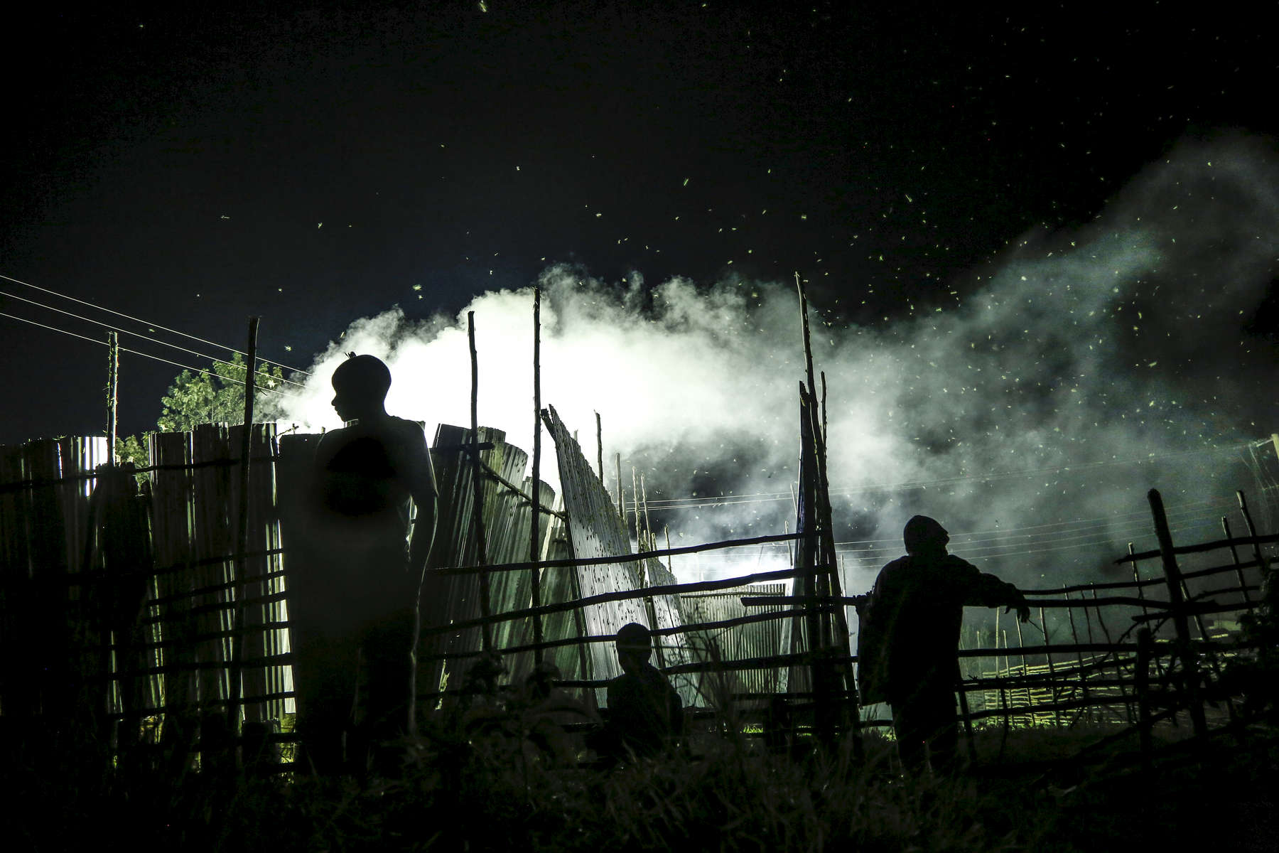 The grasshopper trappers, in the district of Kamwenge, Uganda, on December 3, 2018. During the rainy season Ugandans harvest grasshoppers at night, using wooden scaffolding, iron sheets, lights and smoke. Many people gather around those traps, trying to catch the grasshoppers that managed to escape the baits, This sought after snack is served fried or boiled.