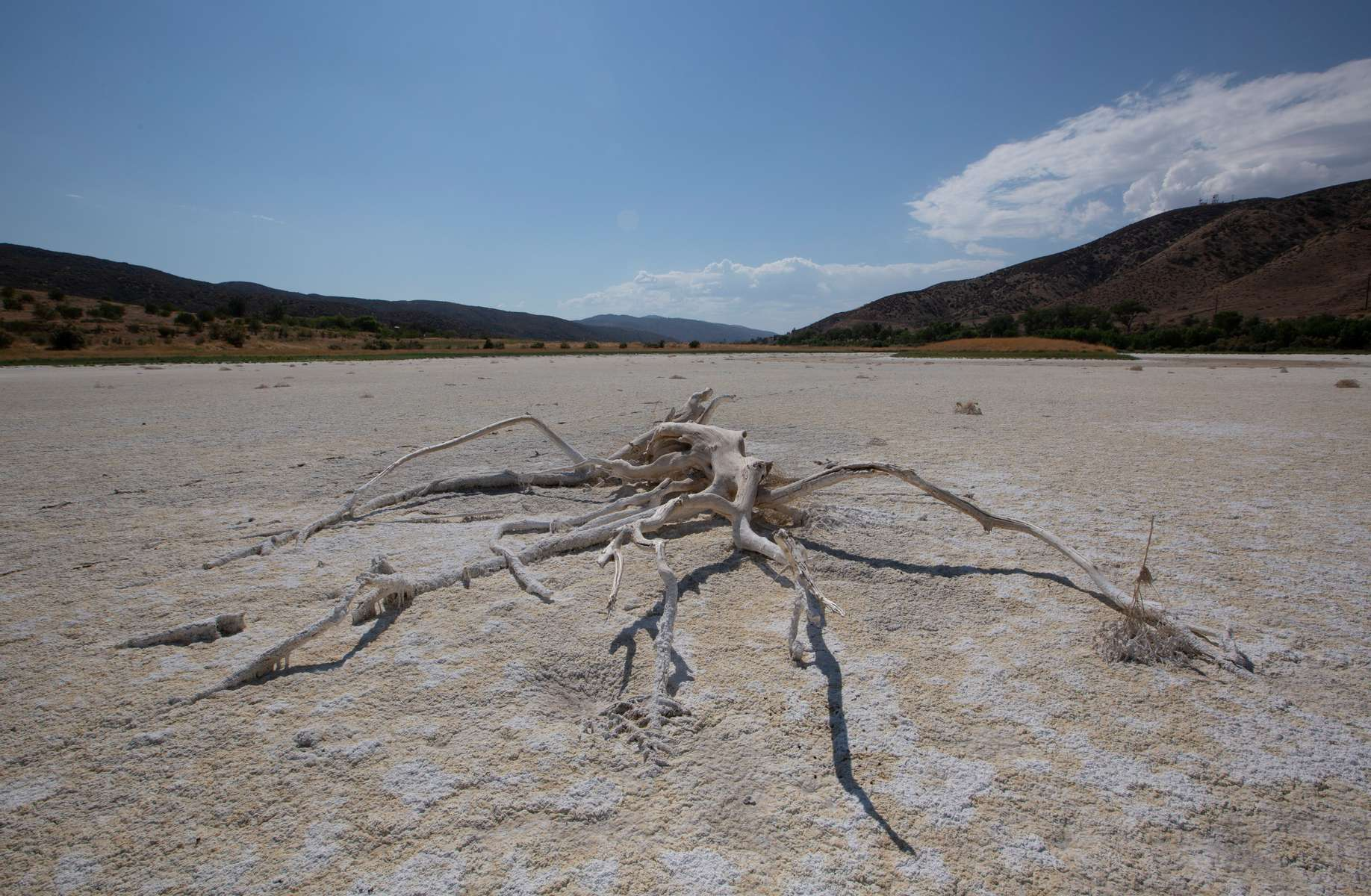 A view of Elizabeth Lake, that has been dried up for several years, as the region experiences extreme heat and drought conditions, in Elizabeth Lake, an unincorporated community in Los Angeles County, California, U.S., June 18, 2021.