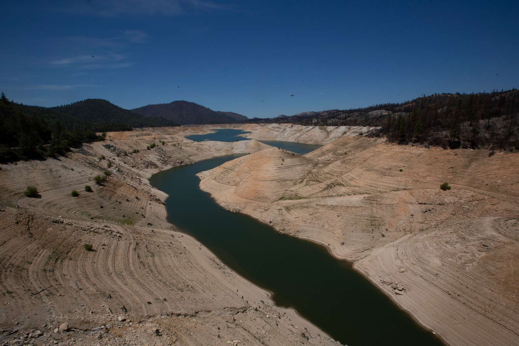Low water levels are visible at Lake Oroville, which is the second largest reservoir in California and according to daily reports of the state's Department of Water Resources is near 35% capacity, near Oroville, California, U.S., June 16, 2021. Picture taken June 16, 2021.