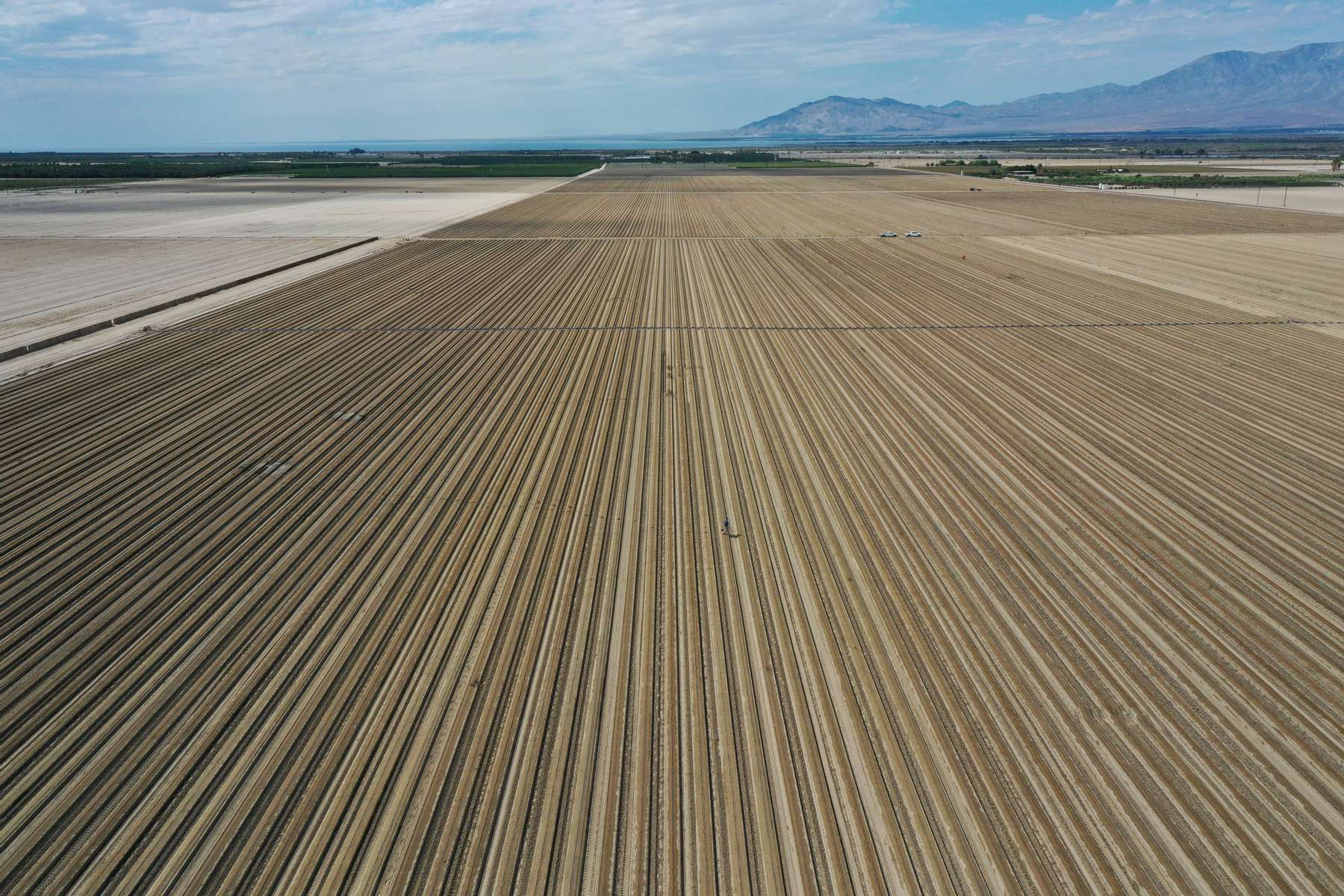 An aerial view shows agricultural fields as California faces its worst drought since 1977, in Mecca, California, U.S., July 4, 2021. Picture taken with a drone July 4, 2021.