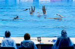 The Spanish team performs in front of the judges on a rainy morning for the Synchronised Swimming Combination Free finals, during the FINA World championships in Budapest, Hungary on July 22, 2017.