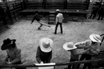 rodeo_17