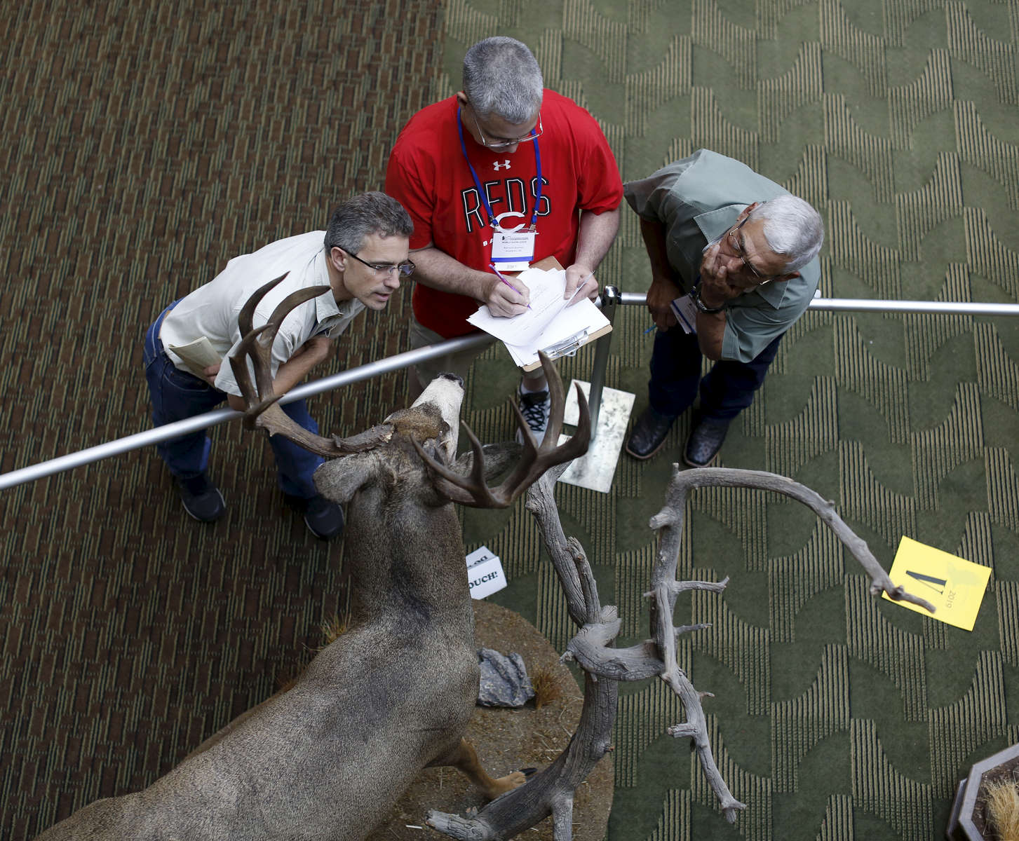 (l-r) Judges Marcus Zimmerman, Kenneth Bauman, and Danny Owens, look at a deer entry trying to decide which one will be named best in the World during the World Taxidermy & Fish Carving Championships, in Springfield, Missouri on May 3, 2019.