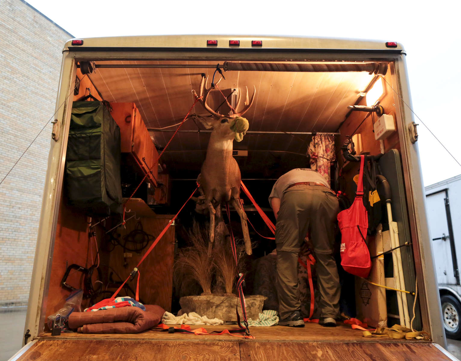 A taxidermist unloads his entry piece from his truck before submitting it for judging, at the beginning of the World Taxidermy & Fish Carving Championships, in Springfield, Missouri on May 1, 2019.