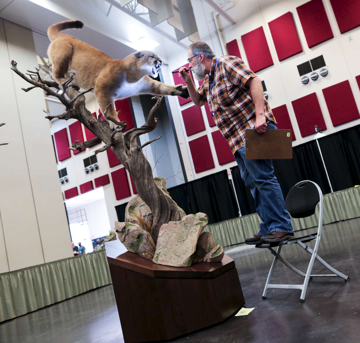 Judge Phil Soucy looks at an entry during the World Taxidermy & Fish Carving Championships, at the Springfield Expo Center, in Springfield, Missouri on May 1, 2019.
