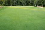 AaronLeclerc_GolfCourses_32