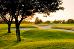 AaronLeclerc_GolfCourses_37