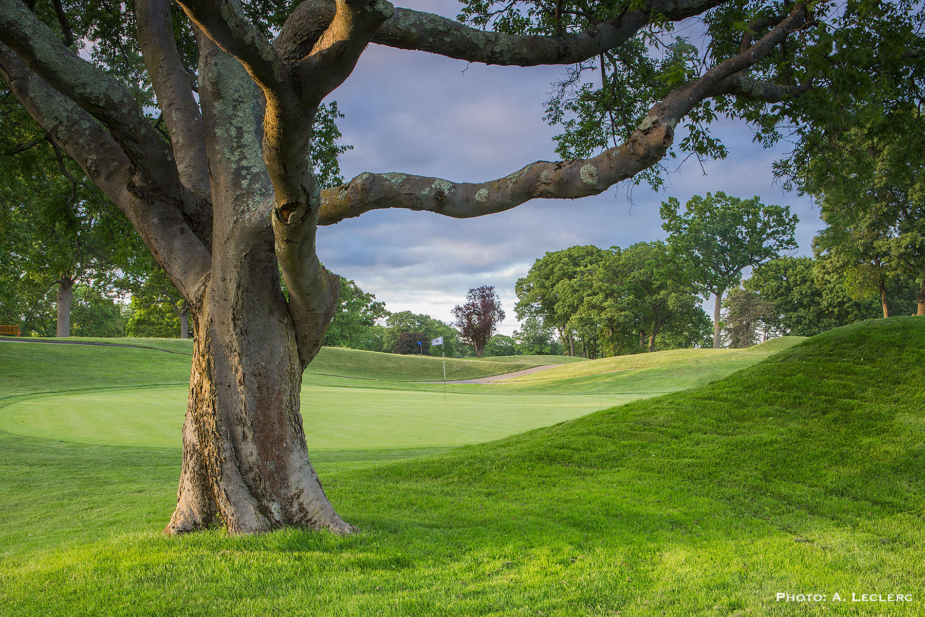 AaronLeclerc_GolfCourses_51