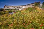 AaronLeclerc_LandscapeArchitecture_01