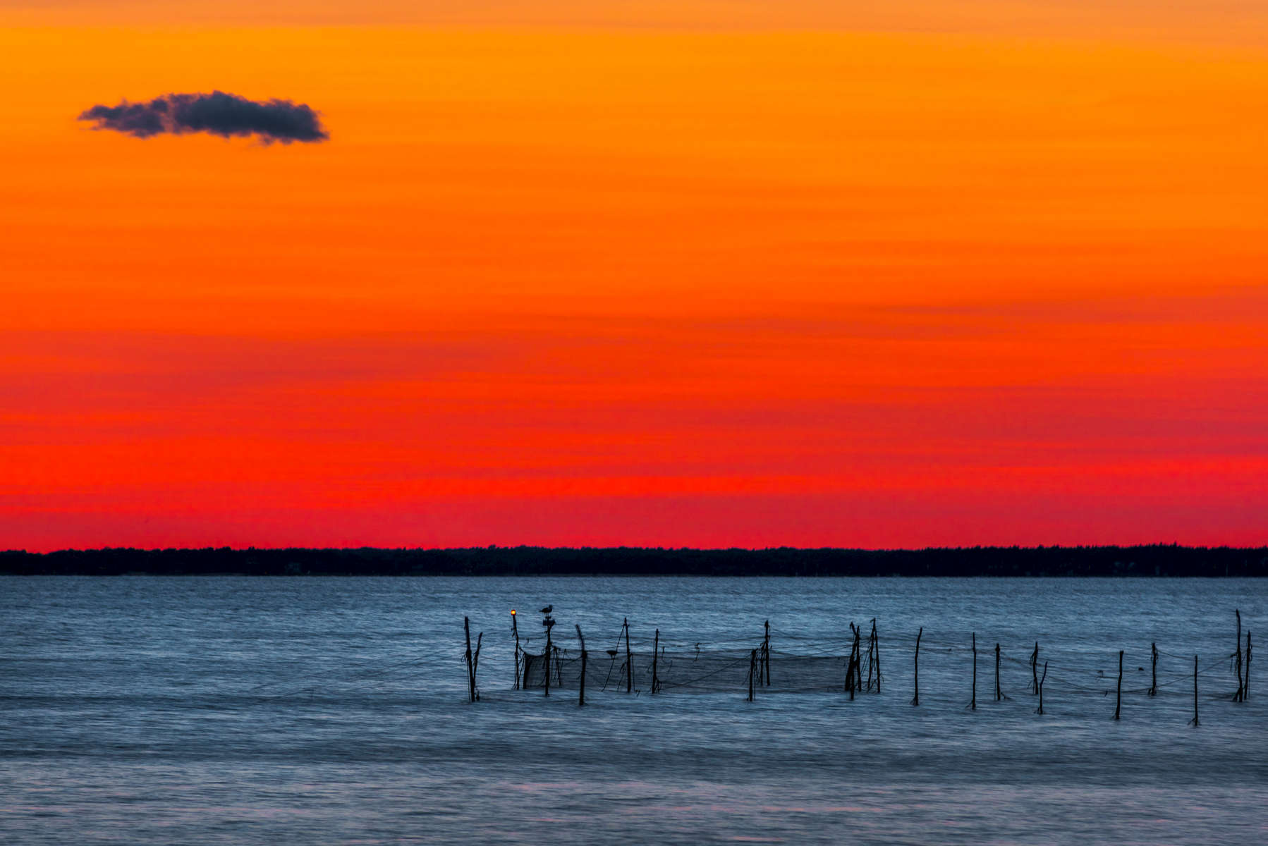 Bird On A Wire. Sunset/Landscape shot by fine art photographer John Mazlish on the beach outside of Sag Harbor, NY. Ideal artwork for home interiors, hotel and corporate settings.